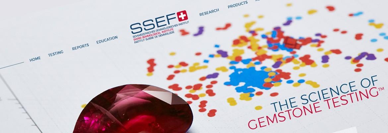SSEF – Sitre vitrine WordPRess